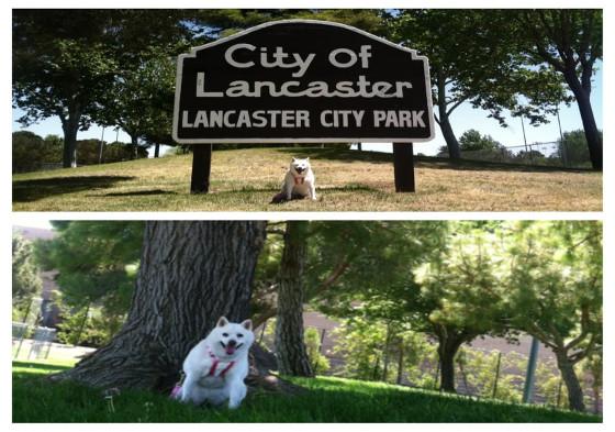 lancaster-city-park
