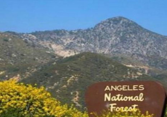 body-found-in-angeles-forest