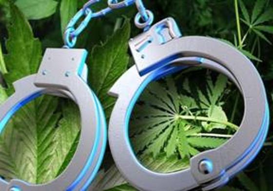handcuffs-marijuana